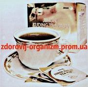 Чай Кудин (Kuding Tea) падуб – напиток здоровья Вековой Восток